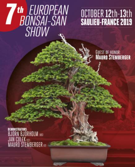 European-Bonsai-San-Show_2019
